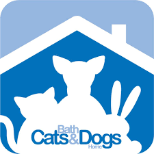 Bath Cats & Dogs