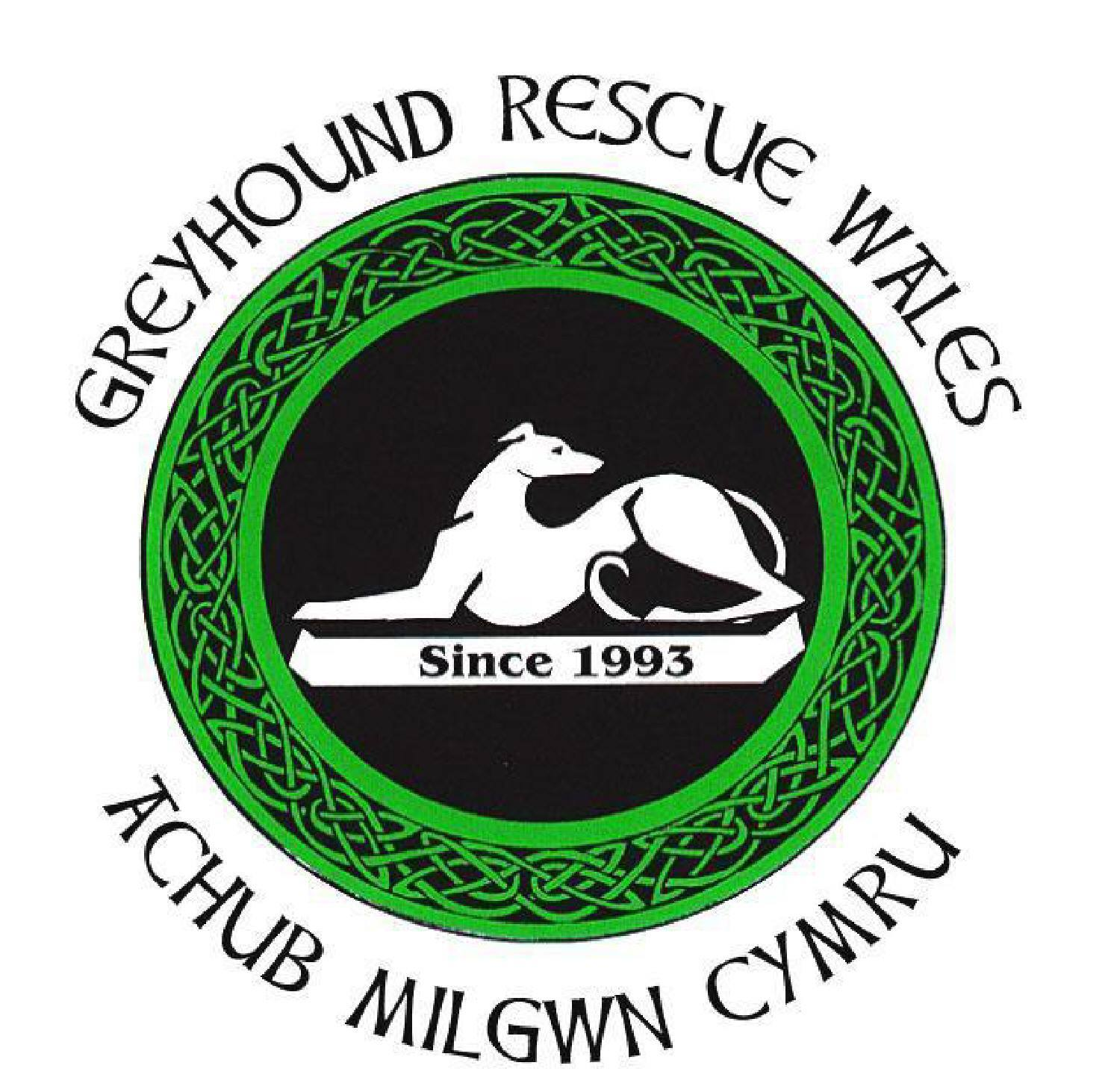 Greyhound Rescue Wales