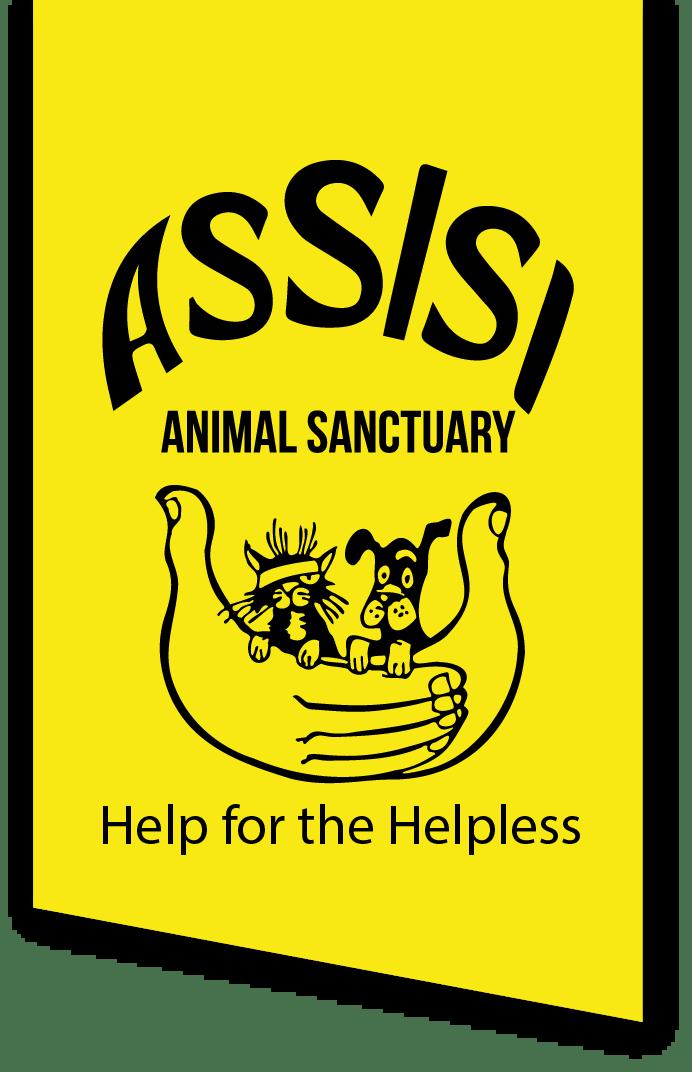 Assisi Logo