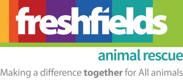 Freshfields Logo Colour
