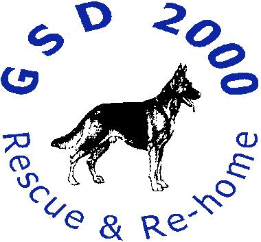 Gsd Logo Blue