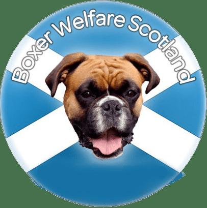 Logo boxer welfare