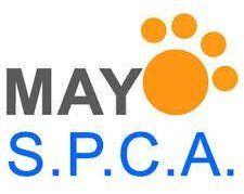 Mayo Spca