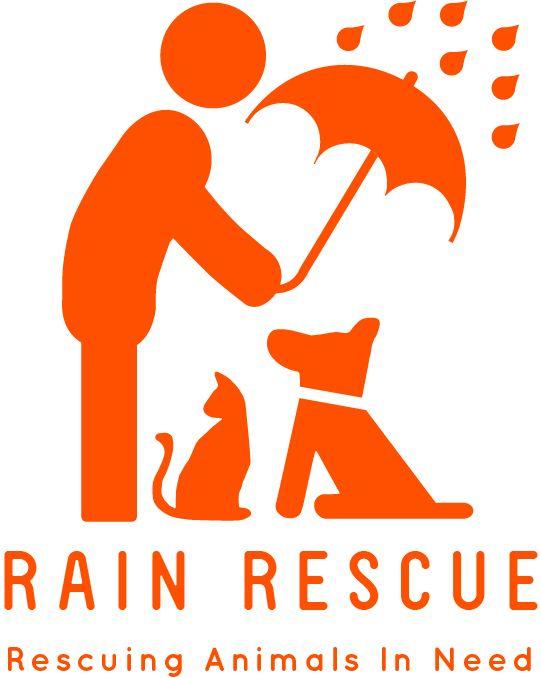 Rain Logo Orange 1