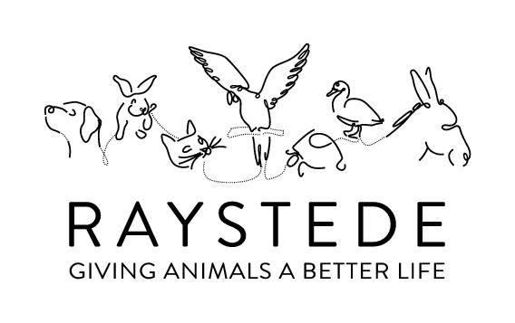 Raystede Logo Black